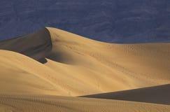 Sun que se levanta sobre las dunas de arena del mesquite Fotos de archivo