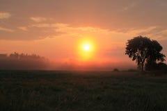 Sun que sube sobre el campo fotografía de archivo libre de regalías