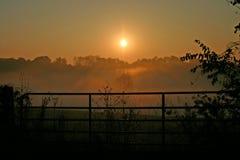 Sun que sube a través de la niebla Foto de archivo