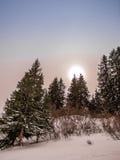 Sun que va abajo entre árboles en las montañas Foto de archivo libre de regalías