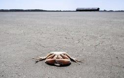 Sun quente Fotos de Stock