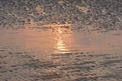 Sun réfléchissant sur la plage de marée basse Image libre de droits