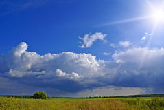 Sun after rain a. Summer landscape with blue sky, green grass and trees Stock Images