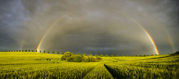 Sun, rain and two rainbows over the field Royalty Free Stock Images