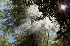 Sun Ray Photographie stock libre de droits