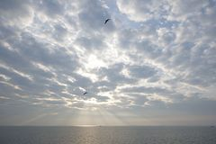 Sun ray in the sky above sea. The Netherlands Stock Images