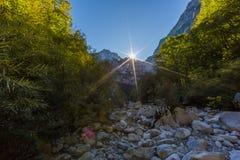 Sun, rayos de la luz en Vikos gorge, los árboles, rocas, cielo azul Imagenes de archivo