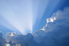 Sun Rays. With rim lighting Royalty Free Stock Photography