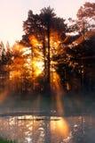 Sun rays stock photos