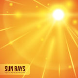 Sun rays design. Royalty Free Stock Photo