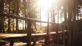 Sun rays falling on a wooden bridge deep in the forest. Beautiful scene of a deep forest with sun rays coming in through the trees casting light on a wooden stock video