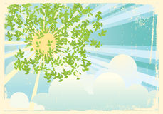 Sun rays in green leaves.Vintage Stock Photography