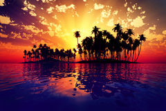 Sun rays inside coconut island. Red sun rays inside coconut island on golden tropic sea Royalty Free Stock Images