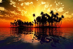 Sun rays inside coconut island Royalty Free Stock Photos
