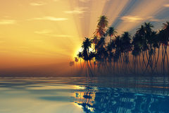 Sun rays inside coconut palms. Island on tranquil tropic sea Royalty Free Stock Images