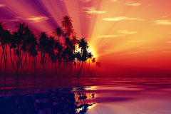 Sun rays inside coconut palms. Red sun rays inside coconut island on purple tropic sea Stock Photos