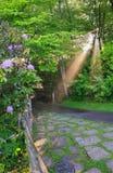 Sun Rays Light Pedestrian Walkway Royalty Free Stock Images