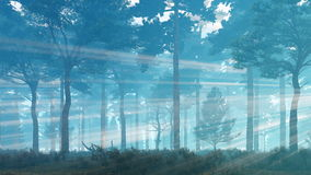 Sun rays in misty pine forest at dawn or dusk 4K. Foggy mystical pine forest with sunbeams shining through the trees at misty dawn or dusk. Pan right shot vector illustration