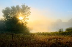 Sun Rays Through the Morning Fog. Crepuscular Rays Through the Fog Near a Pond by the Rice Creek North Regional Trail in Shoreview, Minnesota Stock Photos