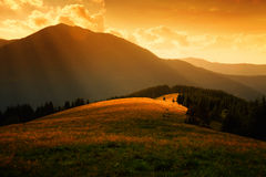 Sun rays over the misty hills. And light in mountain valley Stock Images