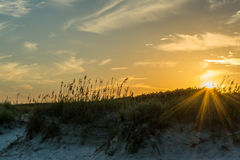 Sun Rays over Sand Dune Royalty Free Stock Photography