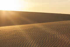 Sun rays over the sand dunes. Stock Image