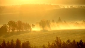 Sun rays between trees at sunrise in mist in autumn landscape. Czech Republic stock footage
