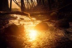 Sun reflect in water, sunrise Stock Photography