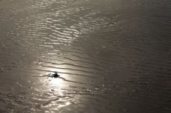 Sun reflecting on sand wrinkles royalty free stock image