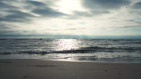 Sun reflection on sea surface. On sunset stock video
