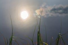 Sun-Reflexion im ruhigen Wasser lizenzfreies stockbild