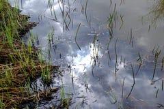 Sun-Reflexion im Wasser Stockfotografie