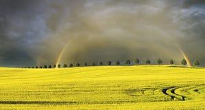 Sun, Regen und zwei Regenbogen über dem Feld stockfotografie