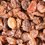 Sun ripened Raisins Stock Photos