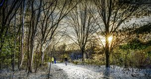 Sun rise through a leafless parkland trail in late Fall. A group of walkers at sunrise on a snowy leafless tree-lined parkland trail in late Fall stock photo