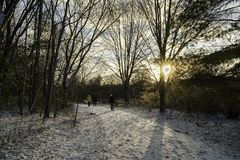 Sun rise through a leafless parkland trail in late Fall. A group of walkers at sunrise on a snowy leafless tree-lined parkland trail in late Fall stock images