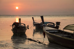 Sun rise at lipe island  in thailand Stock Image