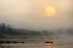 Sun rise river view. Sunrise at Maekhong river with fog background Stock Photography