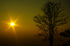 Sun rise Stock Photography