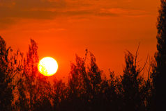 Sun rise up in the morning Royalty Free Stock Photography