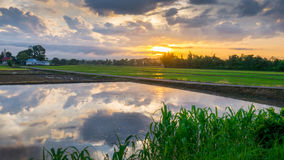Sun rise with water reflection clouds. Royalty Free Stock Images
