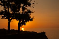 The sun rises behind two tree's silhouette. Stock Image