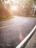 Sun rises on curved road with trees Royalty Free Stock Images