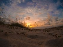 Sunrise over the dunes on St. George Island, Florida. The sun rises over St. George Island, Florida, lighting the Seaoats and dunes stock images