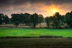 Sun rises over trees Royalty Free Stock Photography
