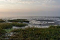 Het Oerd, Ameland wadden island Holland the Netherlands stock photo