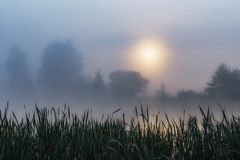 foggy landscape Stock Photography