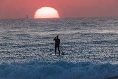 Sunrise SUP Rider Surfing. Surfing with sup boardrider watching the sun rise over the ocean Royalty Free Stock Photos