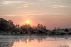 Sun rising over bog Royalty Free Stock Image