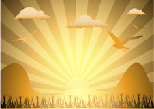 Sun Rising over field. Sun on rise over field Royalty Free Stock Image